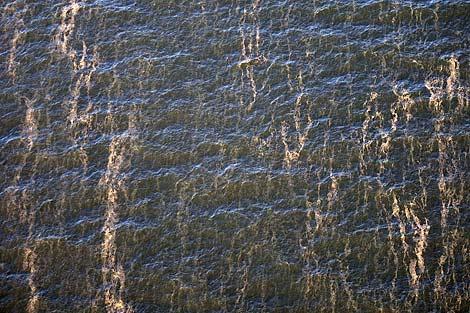Imágenes captadas por Greenpace de las manchas que han aparecido en el Golfo de México.