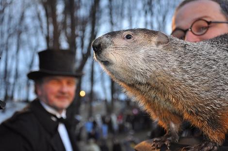 Presentación de la marmota en Punxsutawney (Pensilvania). I Ángeles Jiménez