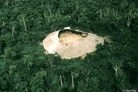 Imagen de un 'shabobo', casa comunitaria yanomami, en Brasil. | Survival