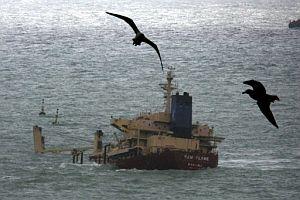 'New Flame', encallado desde agosto en la Bahía de Algeciras. (Foto: EFE)