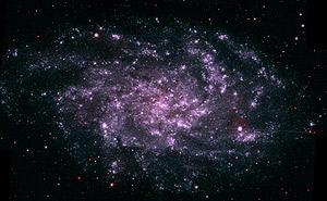 Imagen compuesta de la galaxia M33 vista por los instrumentos ultravioleta del 'Swift'. (Foto: NASA)