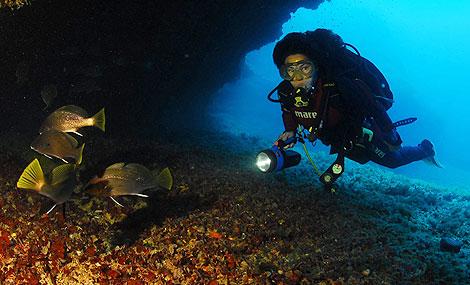 1254418230 0 II Semana de Fotografía Submarina de Formentera   España