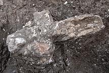 Punta de arma de caza de hace 100.000 años. | Efe