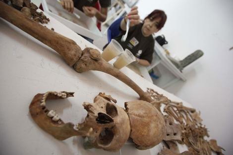 Trabajos de identificación de los restos óseos de la Guerra Civil. | M. Cubero