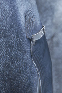 Anilla metálica de aleta. | B. Gineste