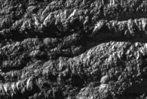 """Rayas de tigre"" en Encélado. | NASA,JPL,SSI"