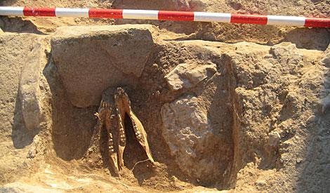 Los restos hallados de sacrificios de animales. | Manuel Cuevas