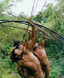 Indígenas 'awá' practican con las flechas.   Fiona Watson  Survival