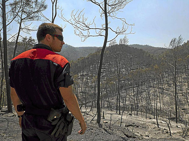 Un bombero contempla la zona quemada por el incendio del Alt Empord. | Eddy Kelele