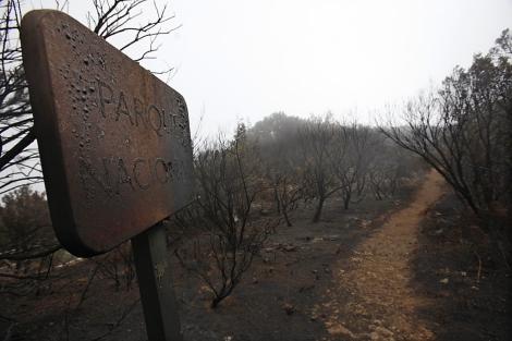 Una entrada al parque de Garajonay, tras el incendio.| Afp/Desiree Martin