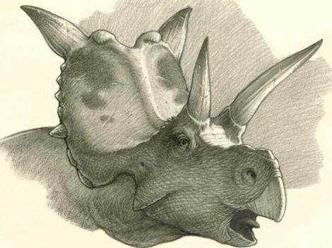 La nueva especie de dinosaurio descubierta. | Mark Schultz
