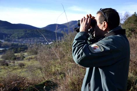 Un agente forestal vigila los bosques en la Sierra de Guadarrama. | Foto: Efe / Raúl Casado.