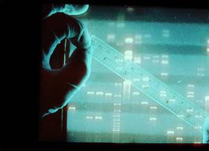Análisis de ADN. (Foto: Instituto Nacional de la Salud de EEUU).