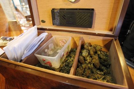 Cogollos de marihuana en un club privado de cannabis en Madrid. | Sergio González